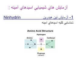 پاورپوینت بررسی آزمایش های كیفی اسیدهای آمینه و پروتئین ها